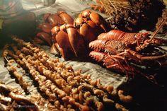 Zanzibar-Forodhani-lobster.jpg (860×575)