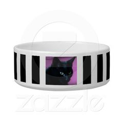 Shop Cat Photo with Black and White Stripes Bowl created by stdjura. Black White Stripes, Black And White, Pet Bowls, Stripes Fashion, Pet Gifts, Your Pet, Elegant, Cats, Design