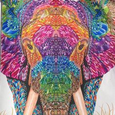 Image result for the menagerie coloring book
