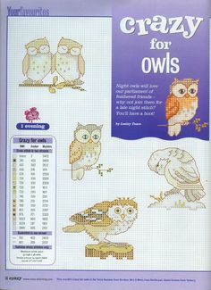 Crazy for owls. Yep!