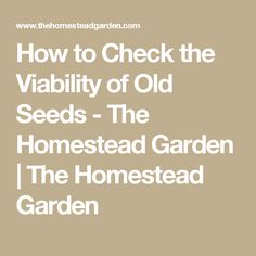 How to Check the Viability of Old Seeds - The Homestead Garden | The Homestead Garden