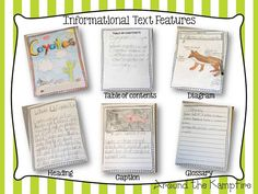 Expert books: Animal research project using informational text features