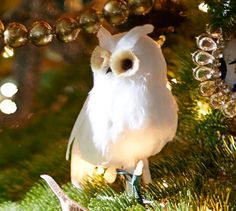 Feather Owl Ornament | Pottery Barn