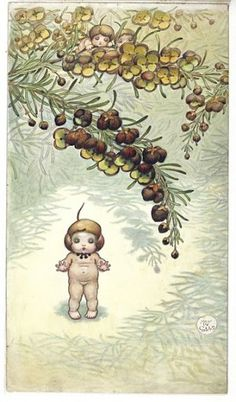 May Gibbs- Boronia Baby Kids Story Books, Stories For Kids, Fairy Land, Fairy Tales, Bebe Nature, Nostalgic Images, Flower Fairies, Woodland Creatures, Australian Artists