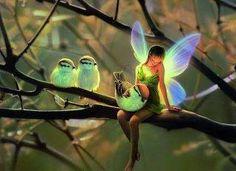 fairy....aaaaaawwwww!