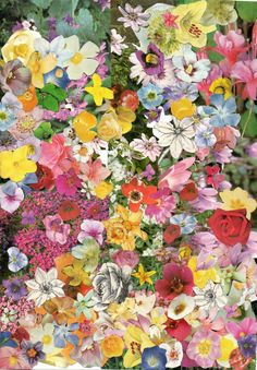 Get kids to cut images of flowers out of old magazines and then paste them into a garden scene or a picture of a vase.