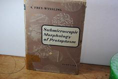 Submicroscopic Morphology of Protoplasm/Vintage