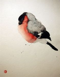 Bullfinch - Karl Mårtens - watercolor