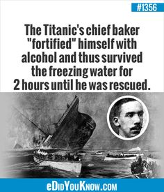 """The Titanic's chief baker """"fortified"""" himself with alcohol and thus survived the freezing water for 2 hours until he was rescued. Hey, it's survival of the fittest! Weird History Facts, Wtf Fun Facts, True Facts, Funny Facts, Random Facts, Funny History, History Memes, Crazy Facts, Stupid Funny Memes"""