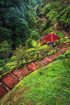 ☆Natural Park of Ribeira Potholes, São Miguel Island, Azores Portugal☆