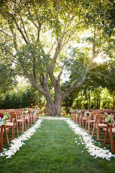 Long Island Wedding at Bedell Cellars from Alexandra Meseke Photography, . Long Island Wedding at Bedell Cellars from Alexandra Meseke Photography, Alway. Wedding Ceremony Ideas, Outdoor Ceremony, Wedding Ceremonies, Outdoor Weddings, Wedding Aisles, Field Wedding, Ceremony Seating, Wedding Backdrops, Ceremony Backdrop