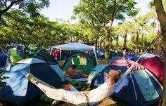 Google Image Result for http://www.barcelona-life.com/media/pics/benicassim-festival.jpg