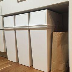 のゴミ箱/キッチンについてのインテリア実例を紹介。「探しに探したゴミ箱︎☺︎ ぴったりサイズが見つかってよかった´ ³`)ノ 」(この写真は 2016-03-06 19:29:31 に共有されました)
