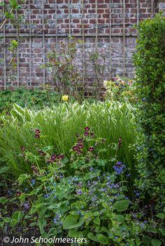 Gardendesign | Tuinontwerp | Brunnera, Geranium and Luzula - Planting Design by John Schoolmeesters