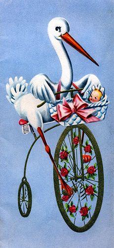 stork on a bike