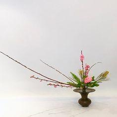 #いけばな #池坊 #ひな祭り #いけばな教室 #ロンドン #ikebanaclass #london #rikka Arranged by Gaye