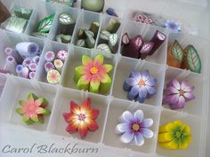 Millefiori Cane Making – In this workshop you will learn how easy it is to make flower and leaf canes and the different ways a complex kaleidoscope cane can be achieved. Polymer Clay Kunst, Polymer Clay Canes, Polymer Clay Flowers, Polymer Clay Miniatures, Fimo Clay, Polymer Clay Projects, Polymer Clay Creations, Polymer Clay Earrings, Clay Crafts
