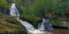 Spruce Flats Falls (1-mile hike behind the Great Smoky Mountains Institute at Tremont)