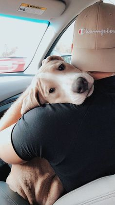 The Visual Vamp — Man's best friend Cute Puppies, Cute Dogs, Dogs And Puppies, Doggies, Cute Baby Animals, Animals And Pets, Funny Animals, Cute Creatures, I Love Dogs