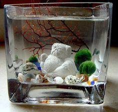 Live Marimo Balls and Mini Pug Buddha Mini Aquarium / by TyberKatz, $32.95