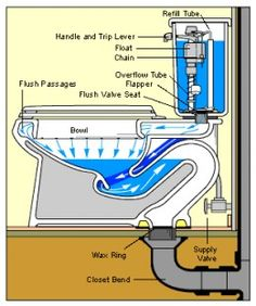 Fixing a Clogged Toilet: No Plumber Required Toilet Repair, Plumbing Installation, Toilet Installation, Heating And Plumbing, Plumbing Tools, Plumbing Pipe, Plumbing Drains, Bathroom Plumbing, Plumbing Fixtures