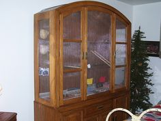 Just think of the possibilities - a homemade aviary out of an old cabinet!!!!