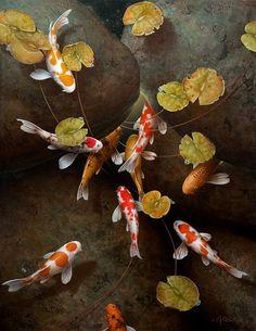 Terry Gilecki creates beautiful paintings of koi that transport the viewer to a world of quiet reflections. Koi Art, Fish Art, Koi Painting, Stone Painting, Koi Fish Drawing, Lotus Art, Collages, Koi Fish Pond, Japanese Koi