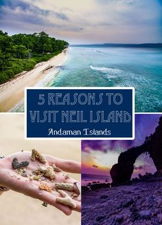 Planning a trip to the Andaman Islands? Can't decide which to visit? Read this!