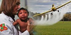 Massive New Study Suggests Pesticide the Cause of Microcephaly — NOT Zika Virus