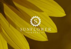 Sunflower | Logo design on Behance