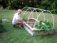 Ups & Downs: Low hoop house build..