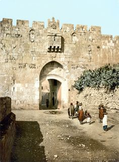 *ISRAEL ~ The Lions' Gate is located in the Old City Walls of Jerusalem, Israel and is one of seven open Gates in Jerusalem's Old City Walls, pictured in Jerusalem Israel, Lions Gate Jerusalem, Israel Palestine, Terre Promise, First Color Photograph, Heiliges Land, Terra Santa, Naher Osten, Israel History