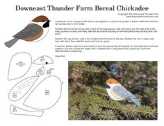 The Retiring Boreal Chickadee | Downeast Thunder Farm