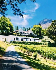 MolenVliet is a beautiful Family vineyard between #Stellenbosch and #Franschoek specializds in exclusive weddings. Needless to say that they only host one wedding at a time and that your Privacy and Exclusivity is first priority. Thank you @molenvliet_vineyards for having @fine_weddings and @andreakellan #molenvliet #exclusivewedding #luxurywedding #luxuryweddingplanner #hochzeitsplaner #hochzeitsplanerberkin #hochzeitsplanerhamburg #igerscapetown #igerssouthafrica