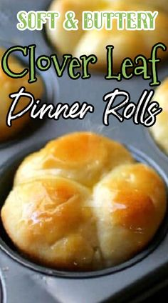 Dinner Rolls Easy, No Yeast Dinner Rolls, Homemade Dinner Rolls, Dinner Rolls Recipe, Easy Yeast Rolls, Homemade Yeast Rolls, Bread Rolls, Homemade Breads, Clover Leaf Rolls