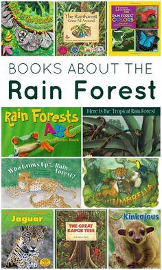 Rainforest Preschool, Rainforest Crafts, Preschool Jungle, Rainforest Theme, Rainforest Animals, Preschool Books, Rainforest Habitat, Preschool Kindergarten, Rainforest Project