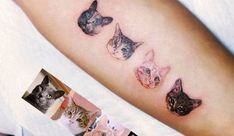 Cat tattoos by South Korean tattoo artist Yammy on Konbini http://www.konbini.com/us/lifestyle/masters-of-ink-hyper-realistic-animal-tattoos-yammy/