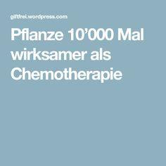 Pflanze 10'000 Mal wirksamer als Chemotherapie