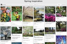 The time my Pinterest account won a Wall Street Journal Spring Inspirations contest