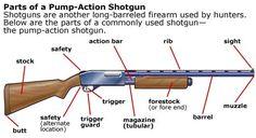 Parts of a shotgun (South Carolina Hunter Safety Course)