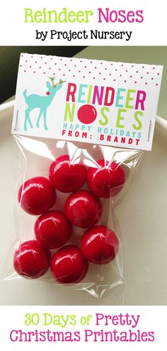 Reindeer Noses - Pretty Christmas Printables