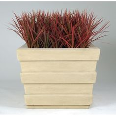 "Allied Molded Products Southern Pines Square Planter Box Size: 18"" H x 24"" W x 24"" D, Color: Black"