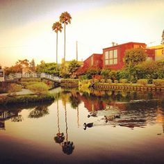 Venice Canals - Los Angeles, CA