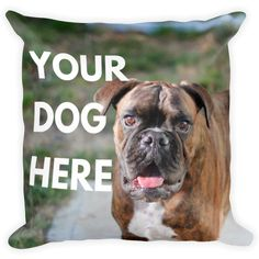 Put your dog cat pet or anything on a throw pillowcase. - http://ift.tt/2oZ4SJR