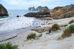 Man walks along Wharariki Beach, Golden Bay, NZ Royalty Free Stock Photo New Zealand Beach, New Zealand Travel, New Zealand Landscape, Travel And Tourism, Beach Fun, Image Now, Beautiful Beaches, Walks, Wilderness