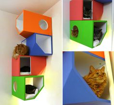 Cat diy projects fort, great bunk house:) #cats #DIY #CatCondo