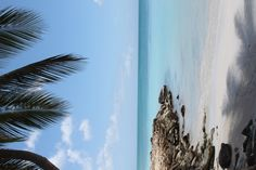 Antigua! Want to go back!