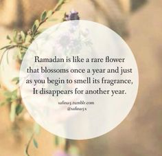 May we all reach the next ramadan In shaa Allah