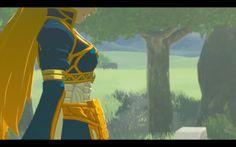 Princess Zelda blue dress Breath of The Wild
