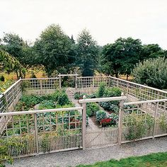 Edible garden 328340629088129867 - Deer-Proof Garden Fence Ideas – Sunset … Source by Fenced Vegetable Garden, Diy Garden Fence, Vegetable Garden Design, Garden Beds, Garden Shrubs, Decorative Garden Fencing, Small Vegetable Gardens, Vegetables Garden, Fence Plants